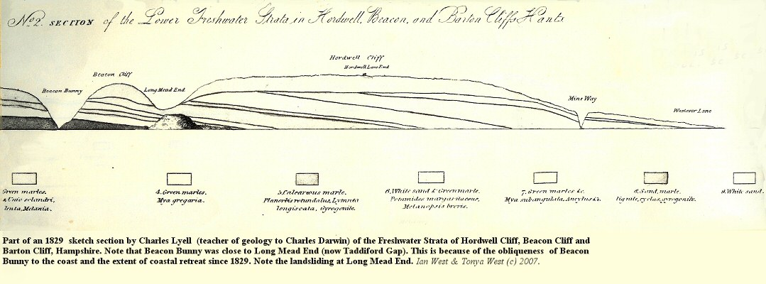 A section from Becton Bunny to Hordle Cliff, Hampshire, sketched by Charles Lyell in 1829