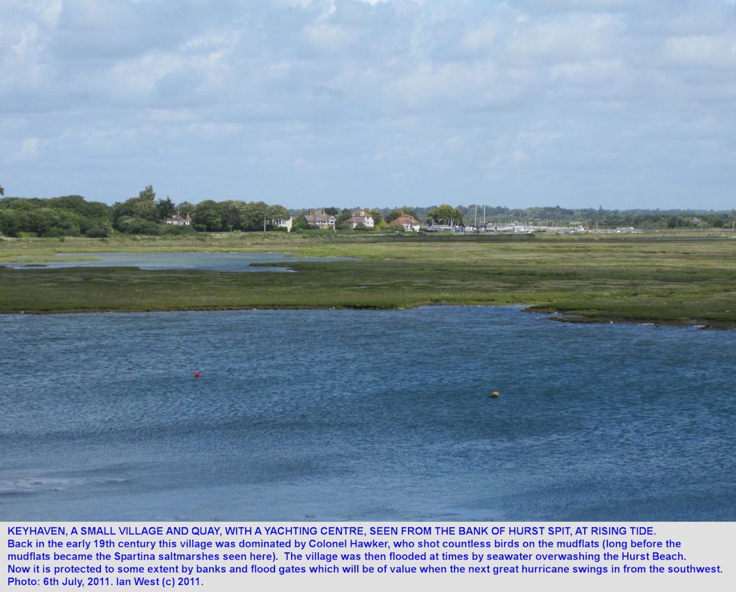 Keyhaven seen across the Spartina marshes from Hurst Beach, Hurst Spit, Hampshire, with a rising tide, July 2011
