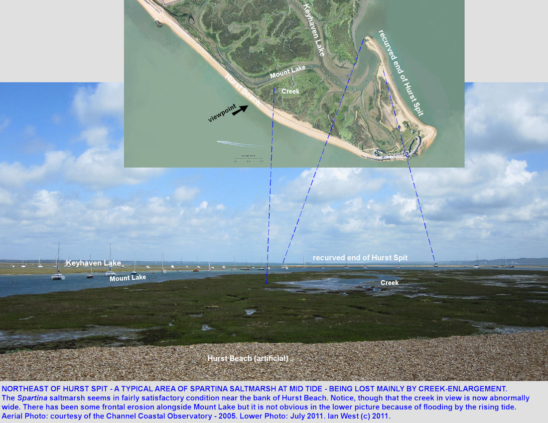 Spartina marshes shown in aerial view and from the bank, and suffering from creek enlargement, Hurst Spit, Hampshire, 2011