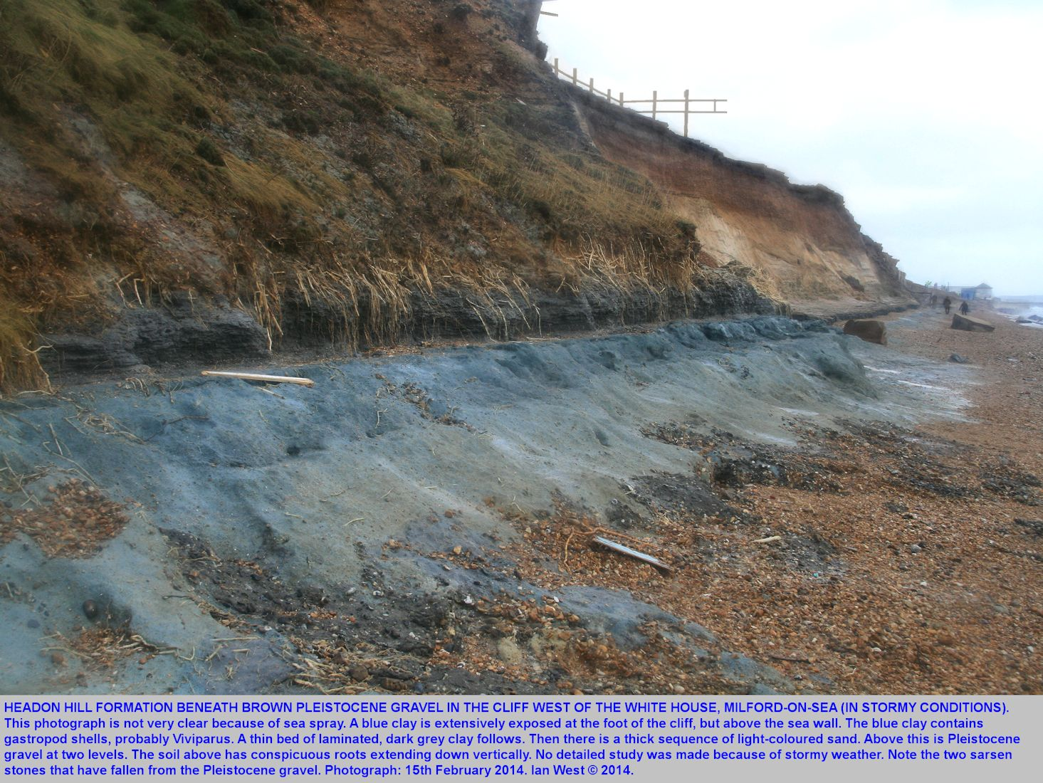 Good exposure of the Headon Hill Formation, after the storm of 14-15th February 2014, west of the White House and near Paddy's Gap, Milford-on-Sea, Hampshire