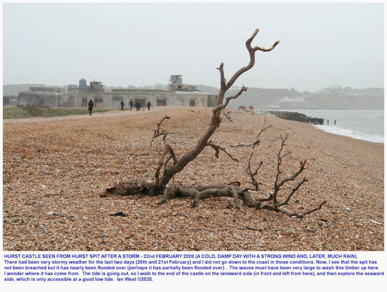 Looking towards Hurst Castle at the end of Hurst Spit, soon after storm activity has washed up some tree debris, February 2020