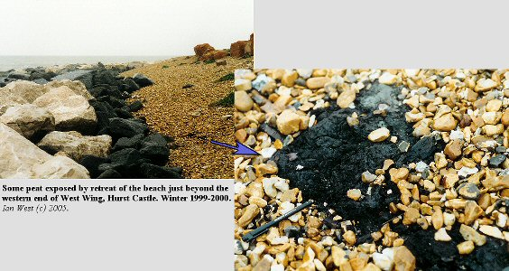 A small exposure of peat at western end of West Wing, Hurst Spit, in winter 1999-2000