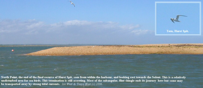 North Point, Hurst Spit, Hampshire