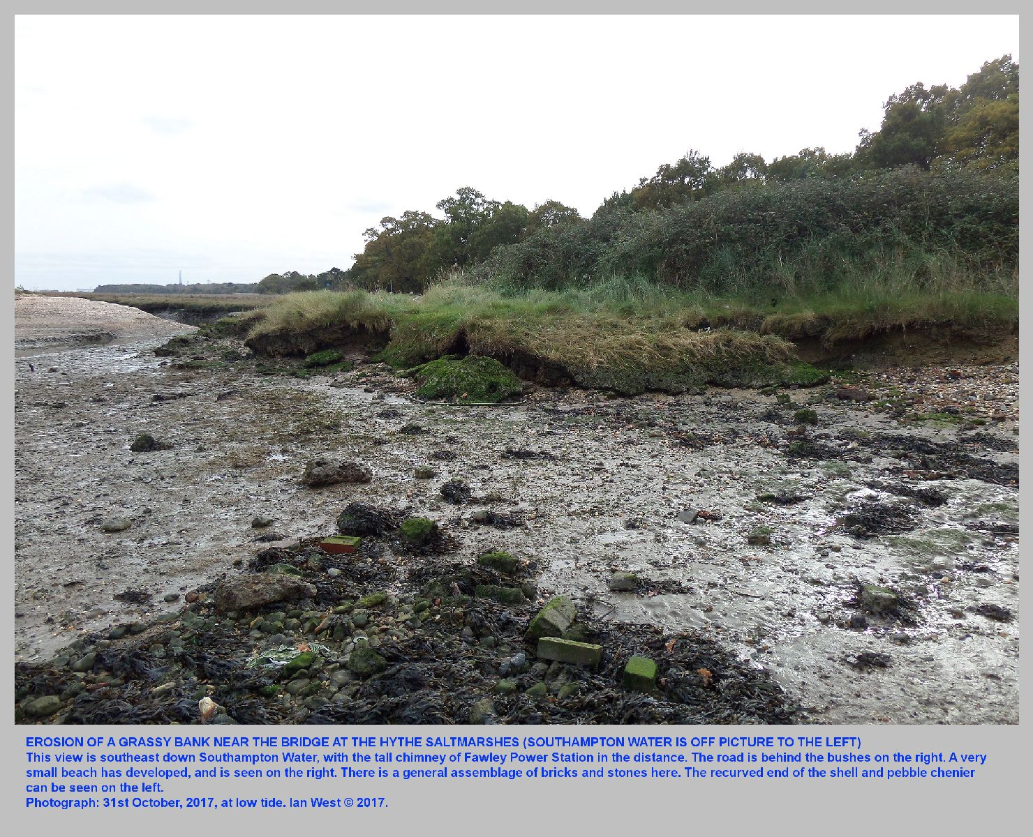 Erosion and collapse of a grassy bank near the bridge, the saltmarshes at Hythe, Hampshire, 31st October 2017