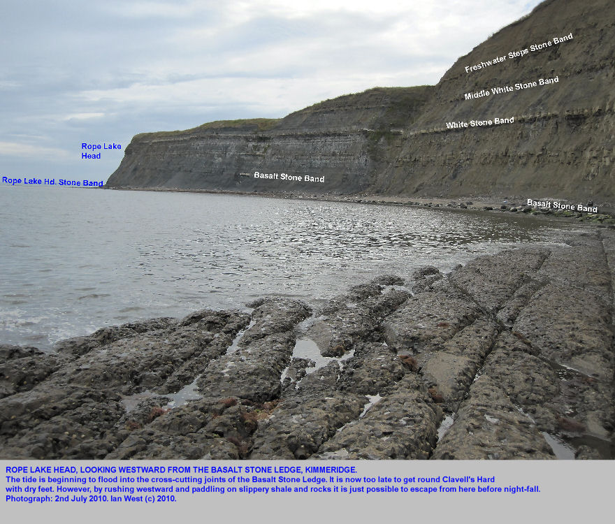 Tide rising into the joints of the Basalt Stone Ledge, Kimmeridge, Dorset, 2010