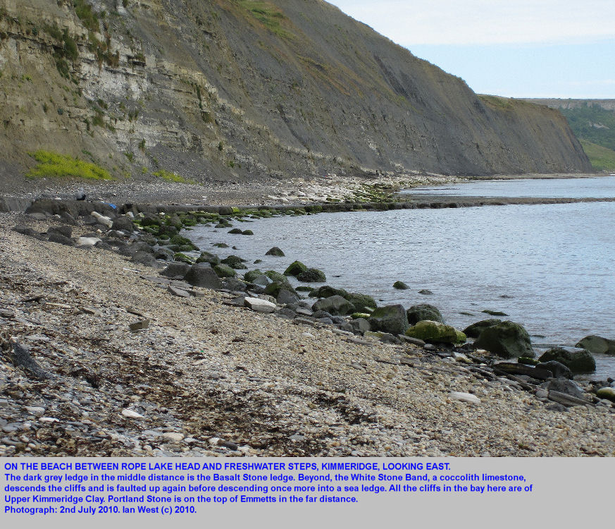 The bay between Rope Lake Head and Freshwater Steps, Kimmeridge, Dorset, with the Basalt Stone and White Stone Band in the cliffs and as sea ledges, 2010