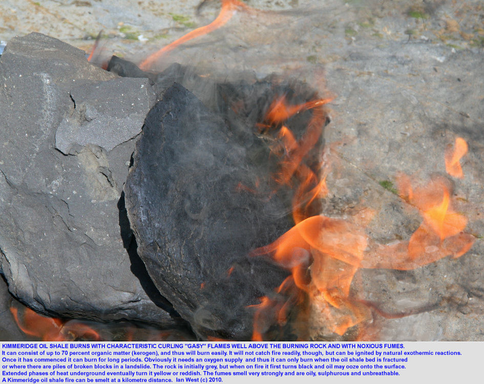 Burning blocks of Kimmeridge oil shale, ignited artificially, showing the gasy type of burning