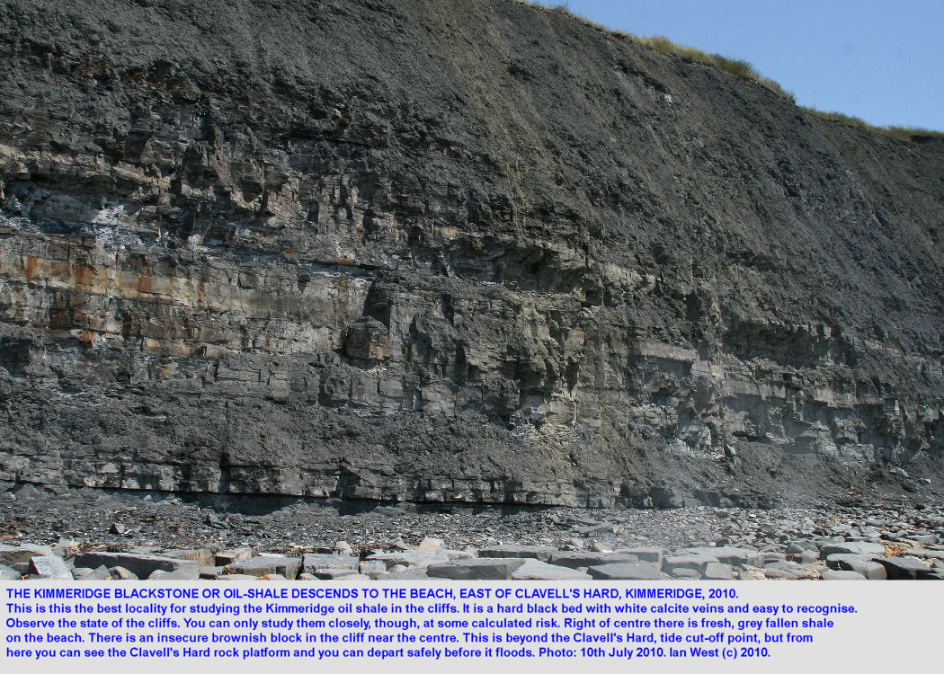 The Kimmeridge oil shale or blackstone descends to the beach east of Clavell's Hard, Kimmeridge, Dorset, 2010