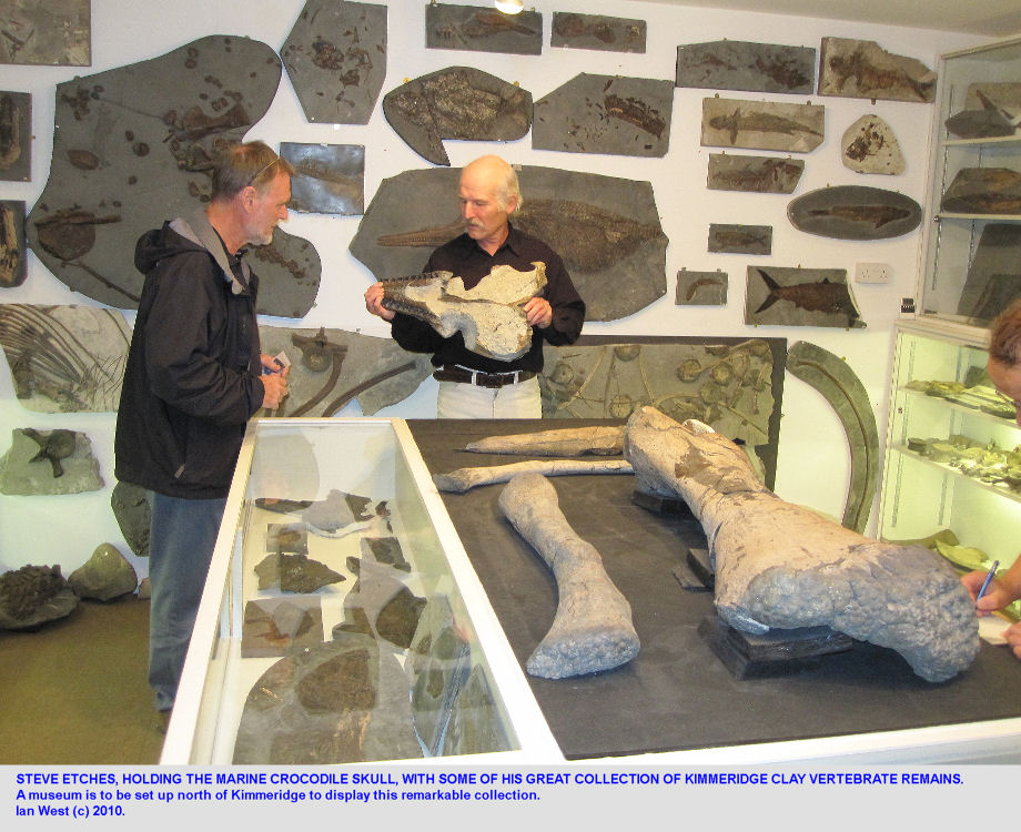 Steve Etches with his Kimmeridge Clay fossil collection, including the skull of a marine crocodile