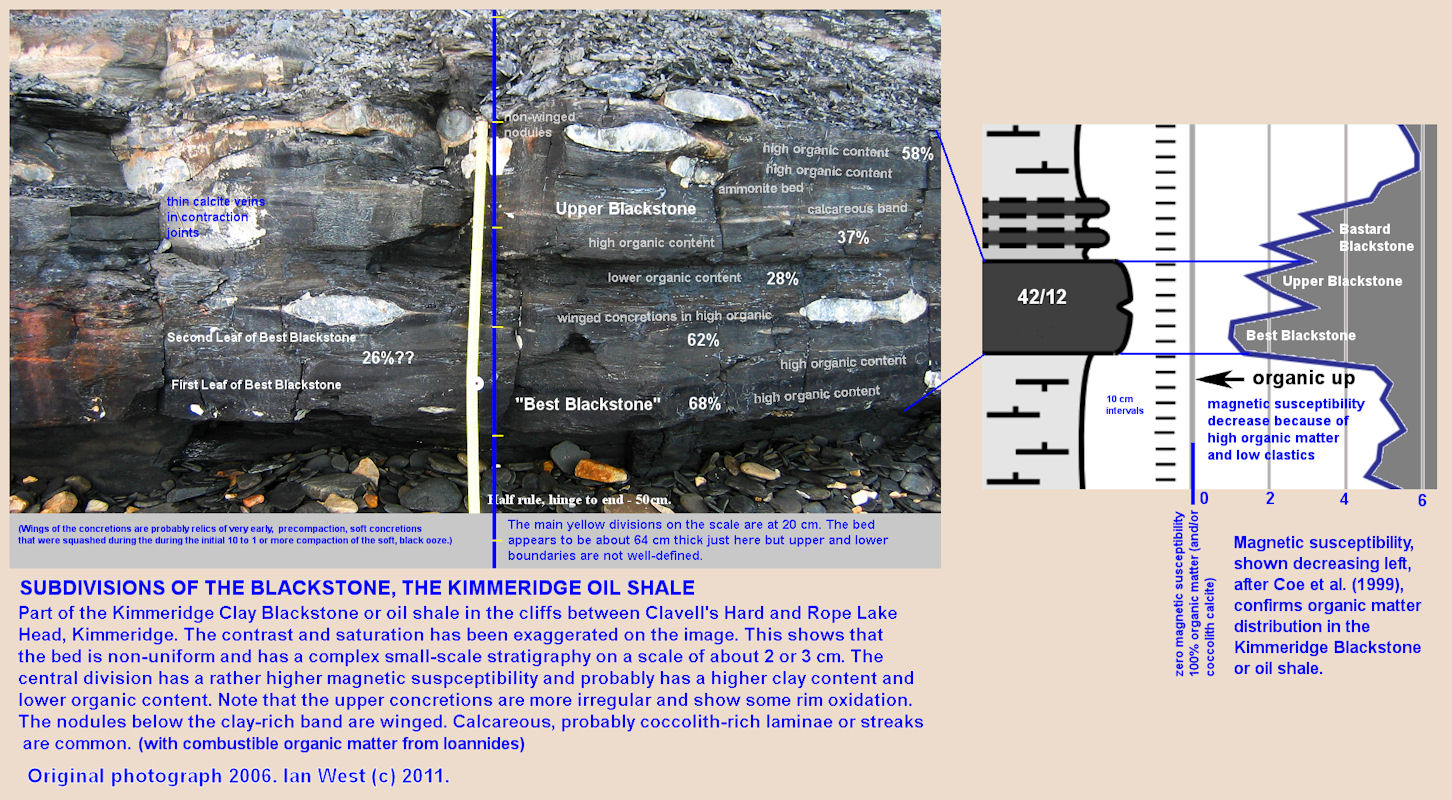 Details of the Blackstone sequence and details, emphasized and shown with a scale, Kimmeridge Bay, Dorset