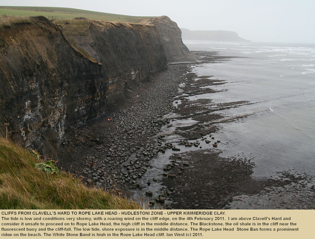 The cliffs between Clavell's Hard and Rope Lake Head, Kimmeridge, with the Blackstone, oil shale, in the base of the cliff, February 2011