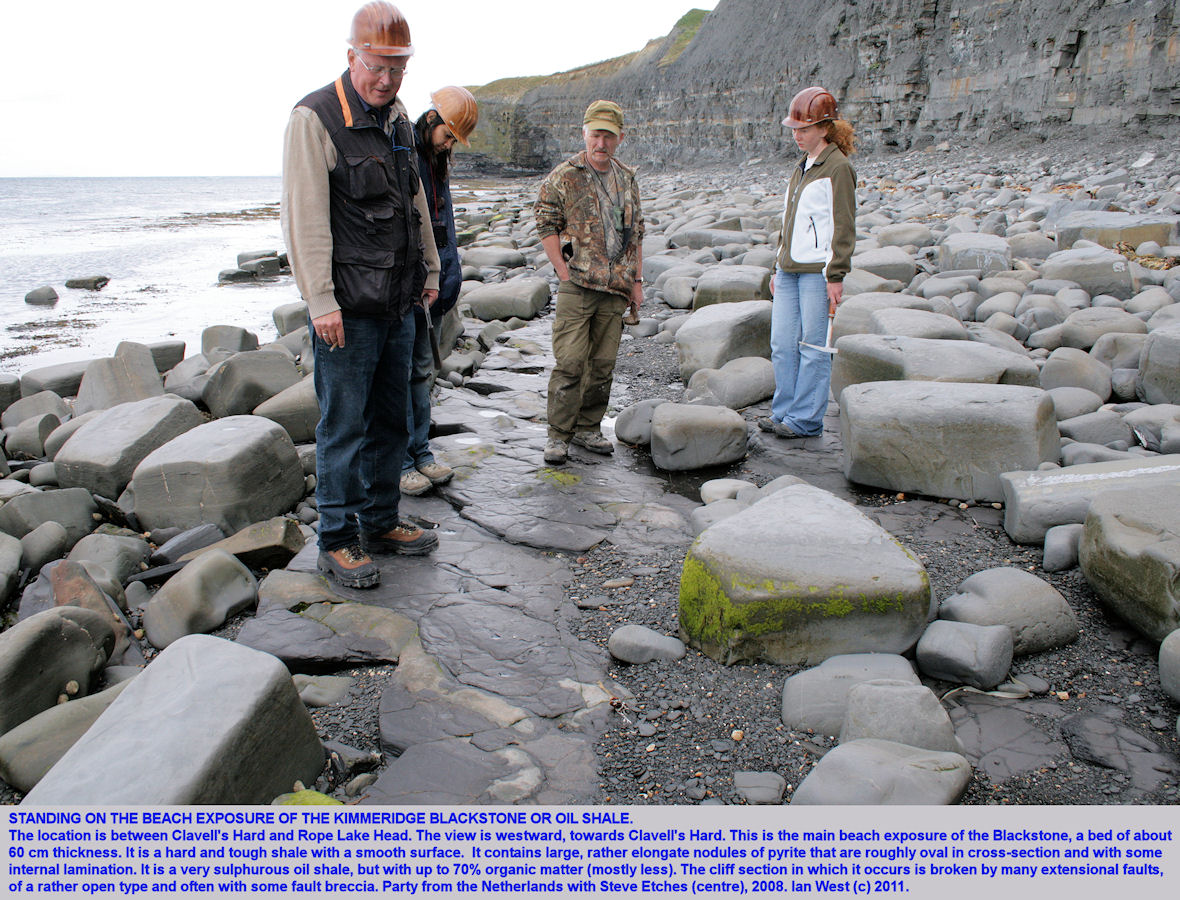 The Blackstone or Kimmeridge oil shale seen exposed on the shore between Clavell's Hard and Rope Lake Head, east of Kimmeridge Bay, Dorset, 2008