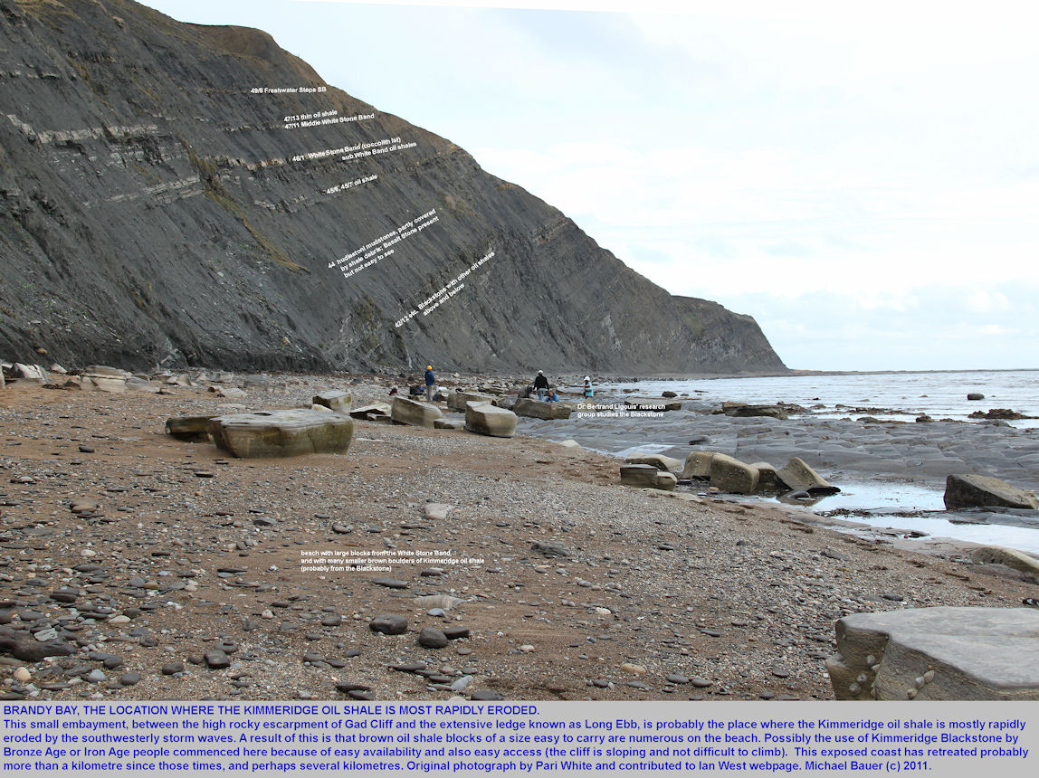 Brandy Bay seen from the southern corner, where the Kimmeridge oil shale or Blackstone is eroded by the sea, west of Kimmeridge Bay, Dorset, 2011