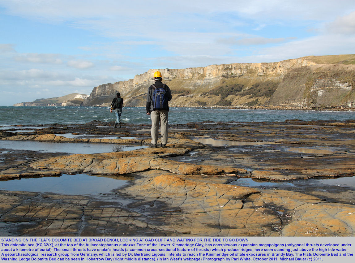 On Broad Bench, with its expansion megapolygons, looking towards Gad Cliff at high tide, Kimmeridge Bay, Dorset, 2011