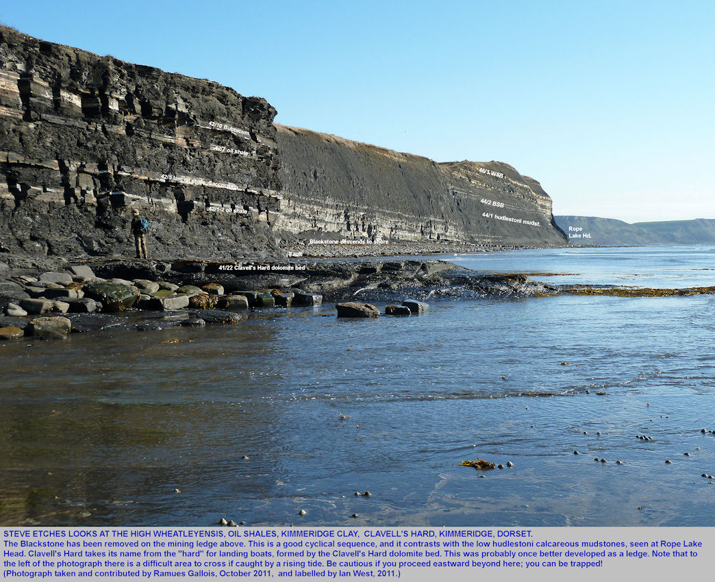 Thin oil shale beds in the high wheatleyensis Zone, Upper Kimmeridge Clay, below the Clavell's Hard mining ledge, east of Kimmeridge Bay, Dorset, October 2011, labelled photograph