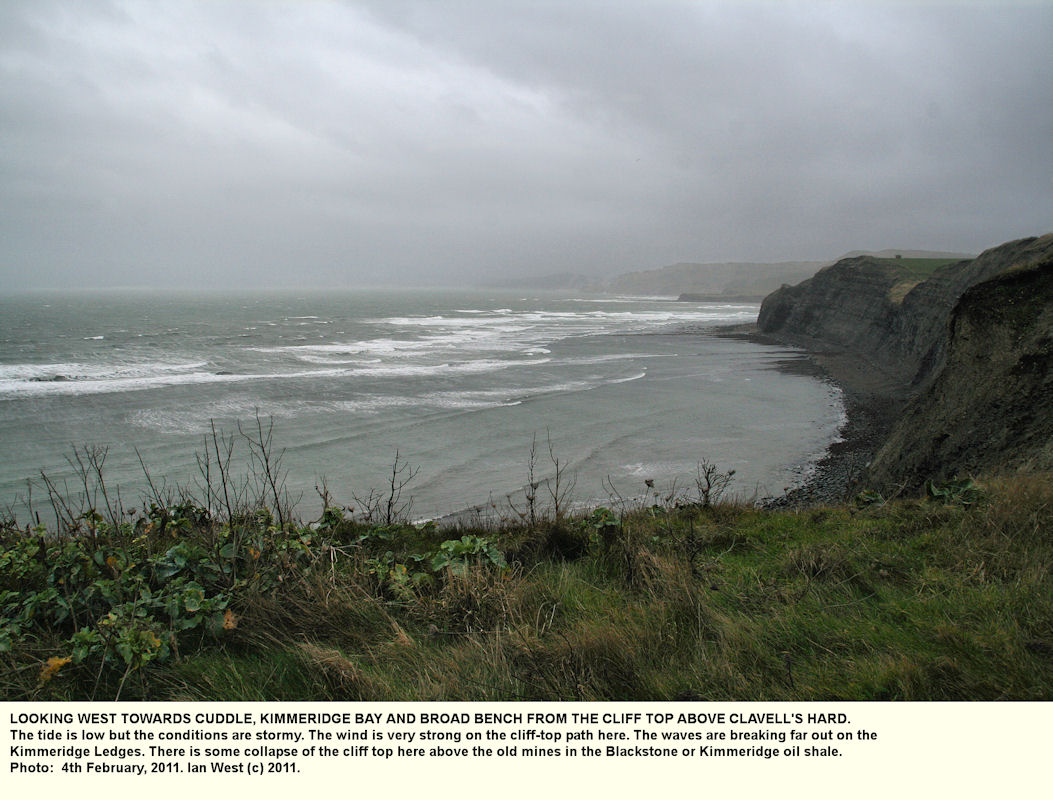 View from above Clavell's Hard towards Cuddle, Kimmeridge Bay, and Broad Bench, during stormy conditions and low tide