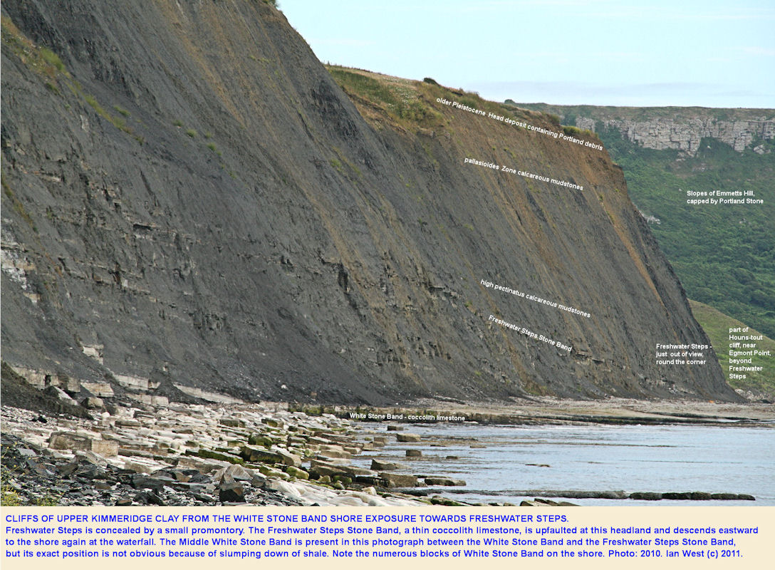 Cliffs east of Kimmeridge and towards Freshwater Steps, showing the Freshwater Steps Stone Band of the Upper Kimmeridge Clay, 2010