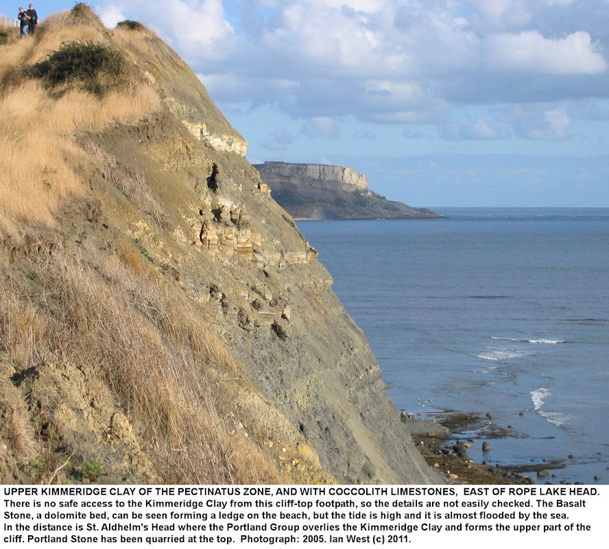 The cliff top east of Rope Lake Head showing coccolith limestone in shale of the pectinatus Zone, Upper Kimmeridge Clay, east of Kimmeridge, Dorset, 2005