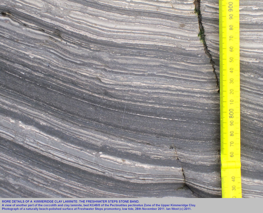 Another view of the coccolith laminite, the Freshwater Steps Stone Band, at Freshwater Steps, east of  Kimmeridge, Dorset, showing fine carbonate-kerogenous shale lamination, 2011