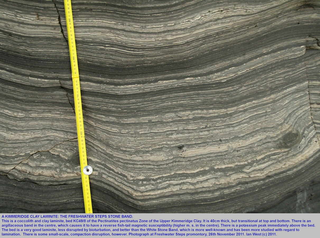 Coccolith laminite with well-developed lamination, the Freshwater Steps Stone Band, Upper Kimmeridge Clay, Freshwater Steps, east of Kimmeridge, Dorset, 2011