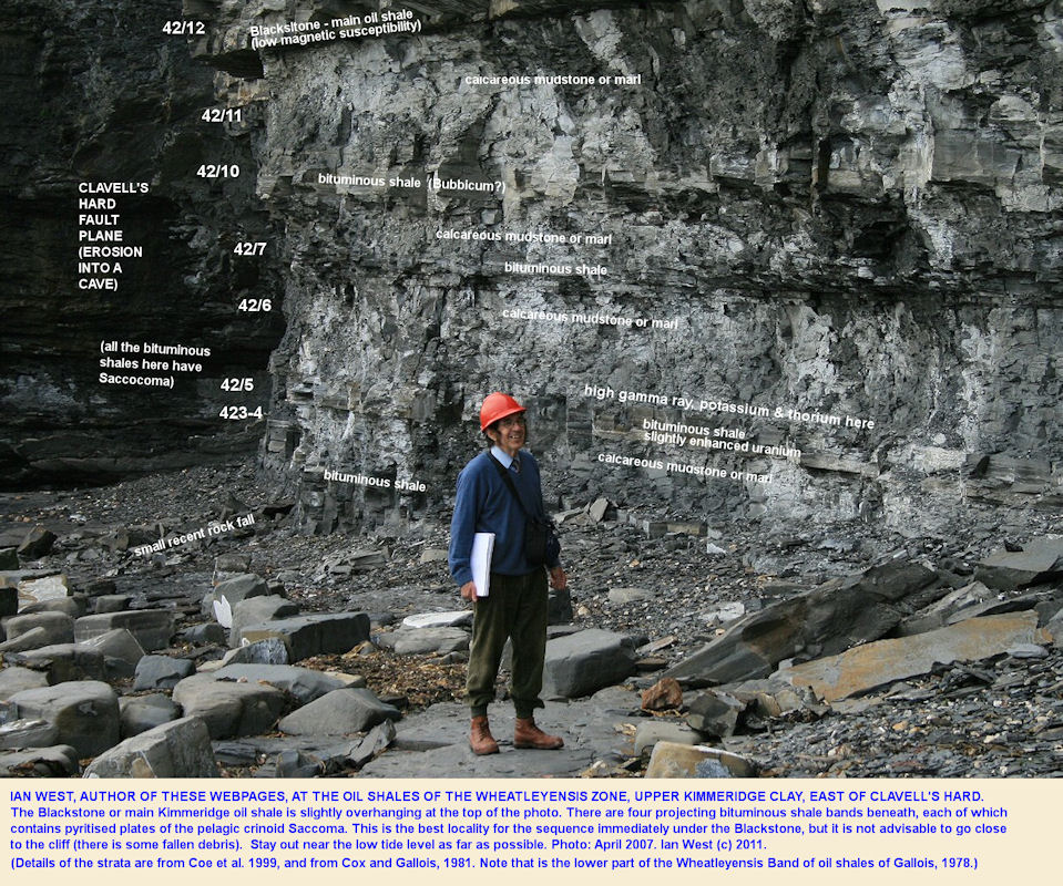 Ian West at the Wheatleyensis bituminous shales beneath the Blackstone, east of Clavell's Hard, Kimmeridge, Dorset, 2007