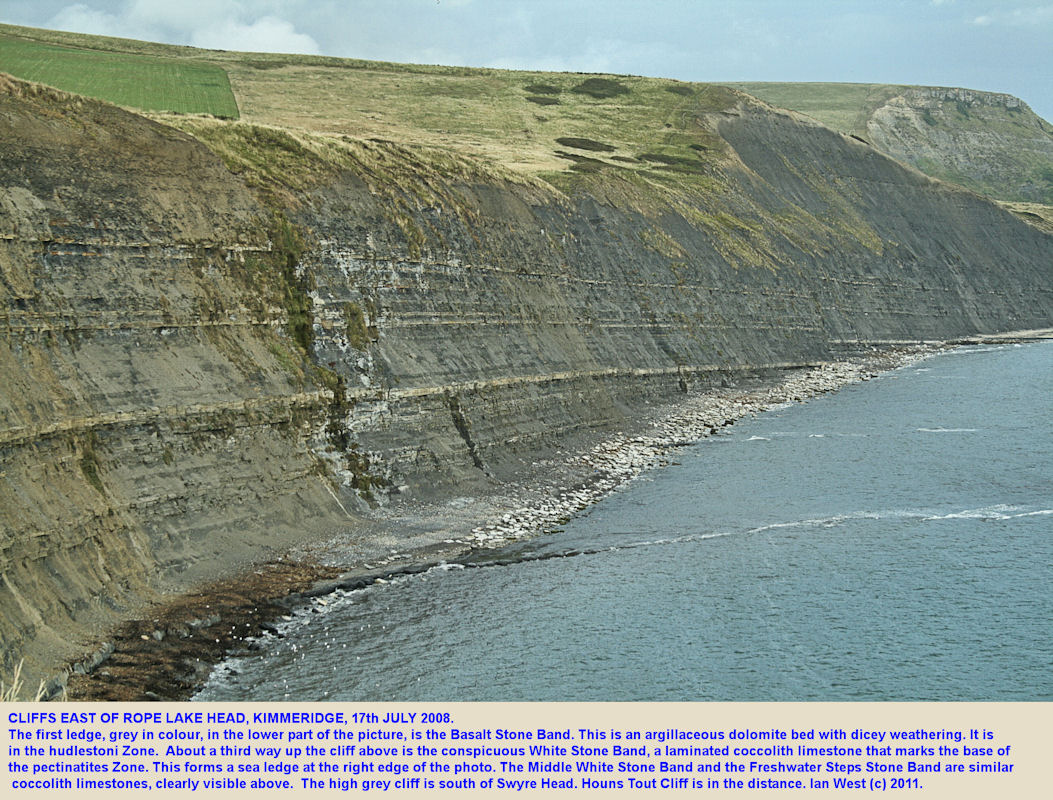 The cliffs of Upper Kimmeridge Clay, east of Rope Lake Head, Kimmeridge