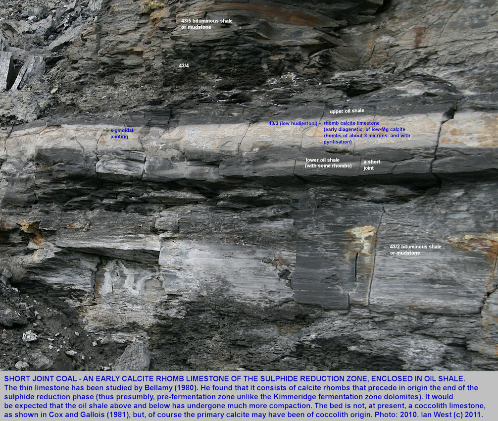 The Short Joint Coal at Rope Lake Head, east of Kimmeridge Bay, Dorset, showing a central calcite rhomb limestone with oil shale above and below, 2010
