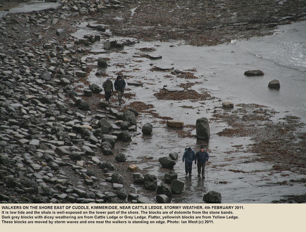 Walkers on the shore east of Cuddle, Kimmeridge, in stormy conditions and low tide, 4th February 2011