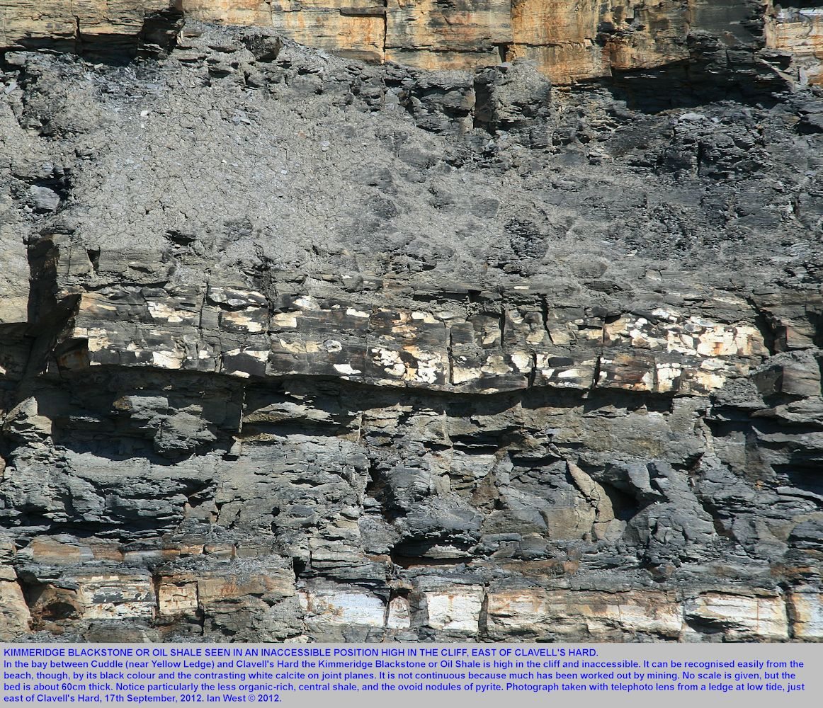 The Kimmeridge Blackstone or oil shale seen high in the cliff, just east of Clavell's Hard,  Kimmeridge, Dorset, 17th September 2012