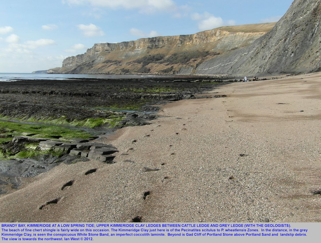 A good low tide at Brandy Bay, Kimmeridge, Dorset, showing Upper Kimmeridge Clay ledges between the Cattle Ledge and the Grey Ledge