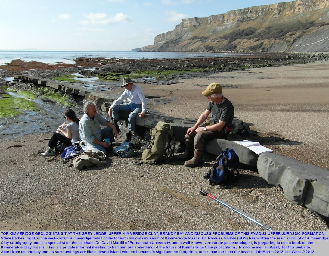 Geologists in discussion while at Grey Ledge, Upper Kimmeridge Clay, Brandy Bay, Dorset, 2012