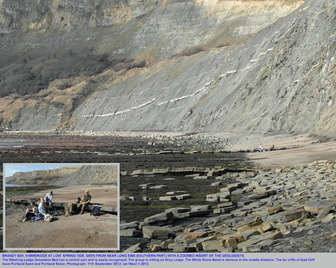A general view of Brandy Bay, Kimmeridge, Dorset from near Long Ebb, looking north or northwest, March 2012 at low spring tide