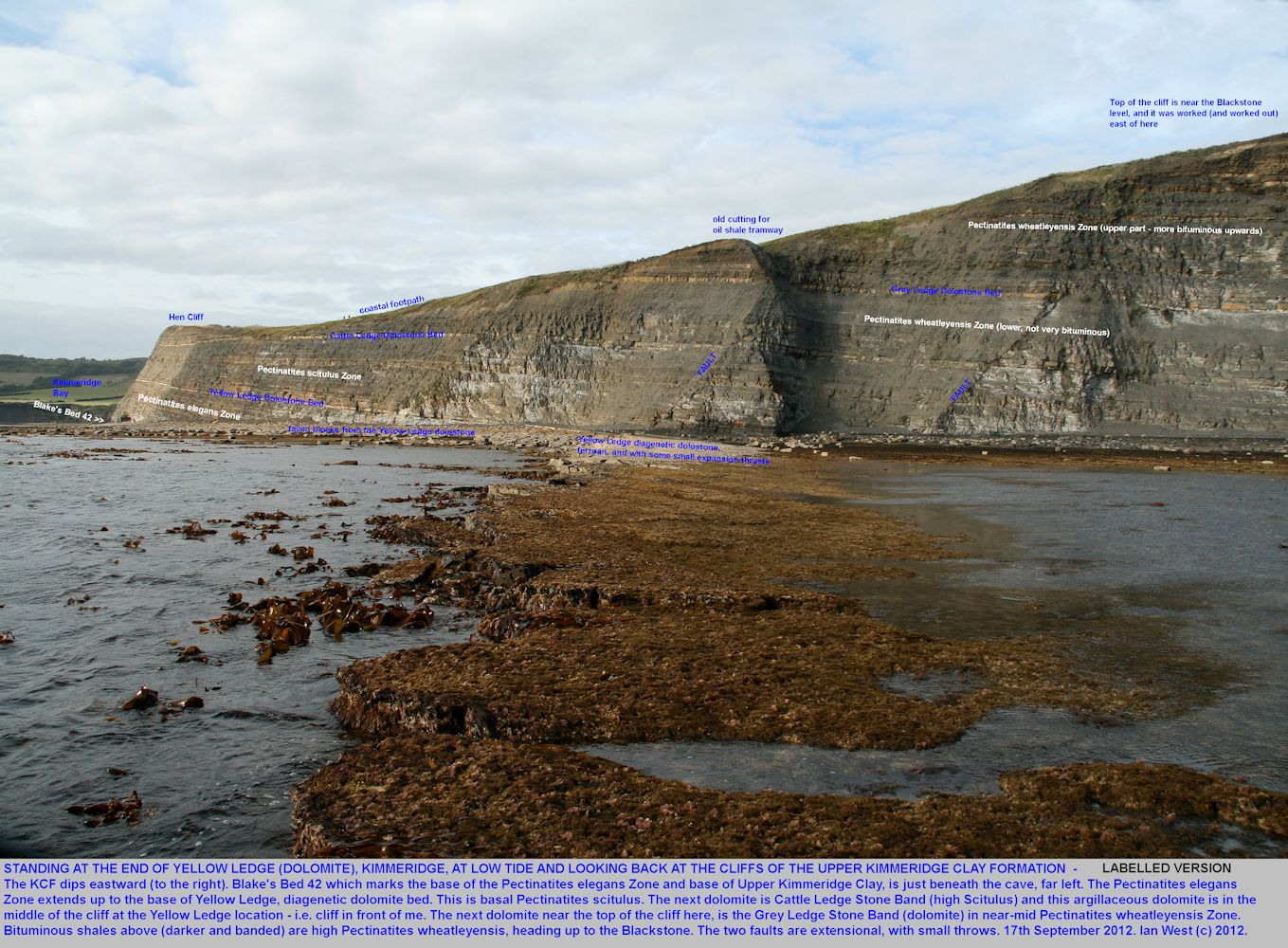 Upper Kimmeridge Clay cliffs seen from the seaward end of Yellow Ledge at low tide, east of  Kimmeridge Bay, Dorset, 17th September 2012 - labelled version