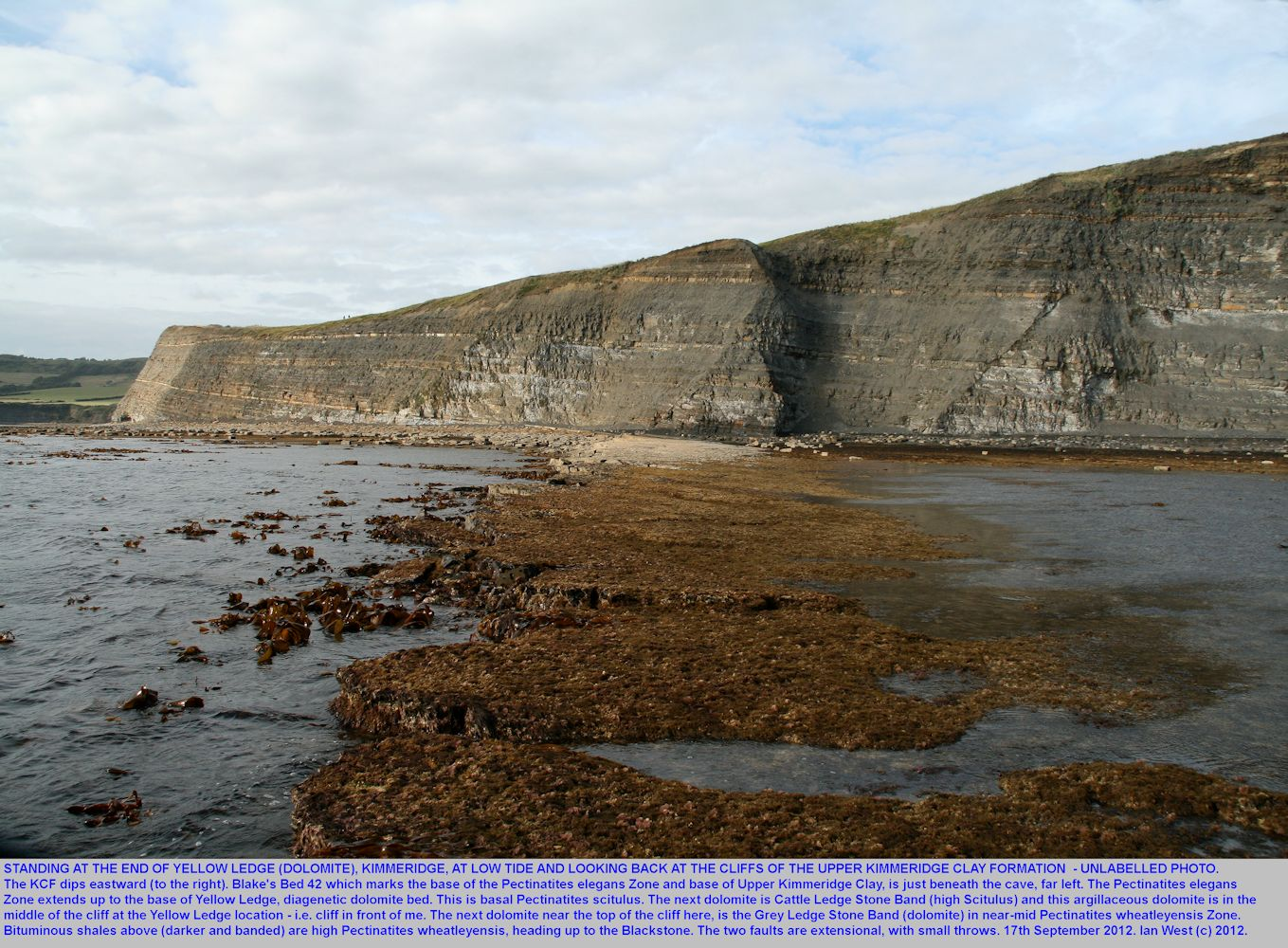 Upper Kimmeridge Clay cliffs seen from the seaward end of Yellow Ledge at low tide, east of  Kimmeridge Bay, Dorset, 17th September 2012
