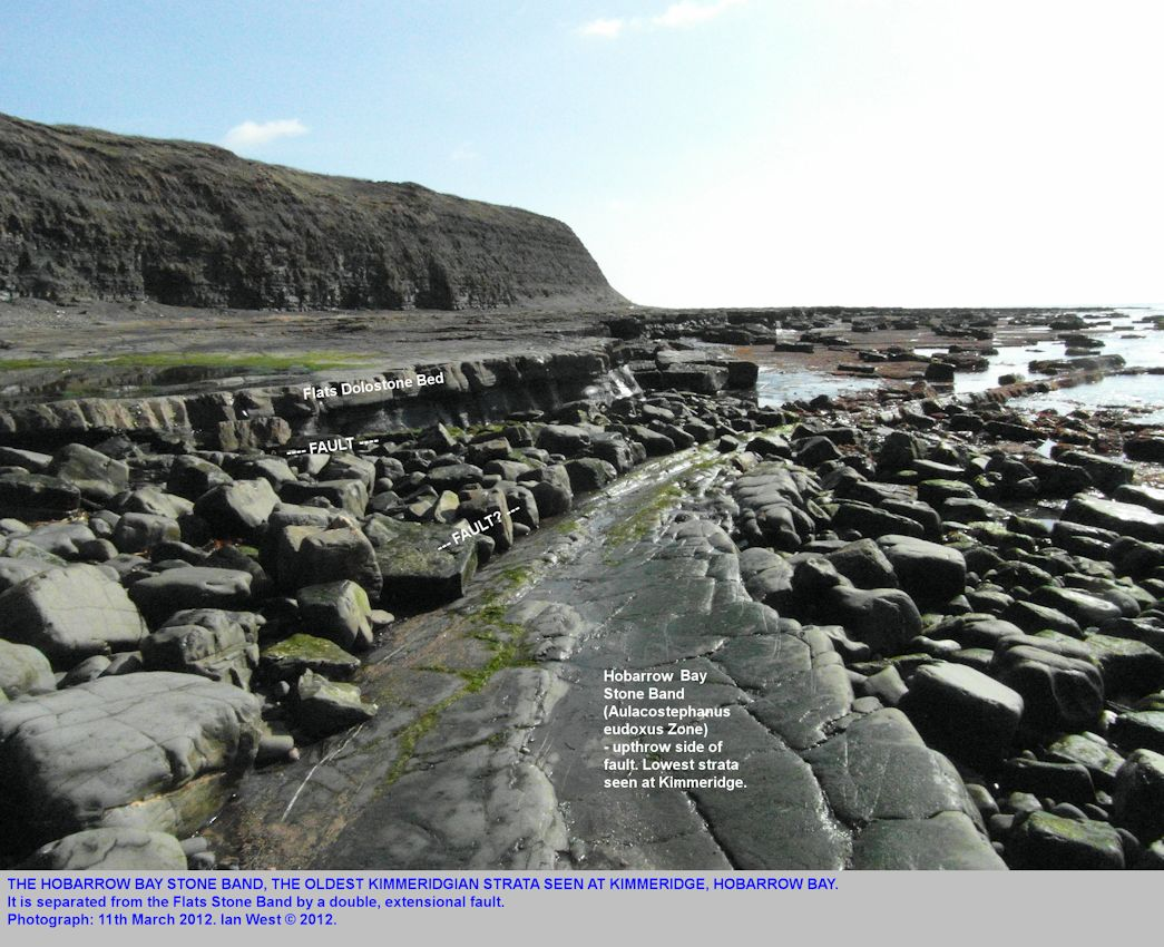 The Hobarrow Bay Stone Band brought up by a fault in Hobarrow Bay, Kimmeridge, Dorset