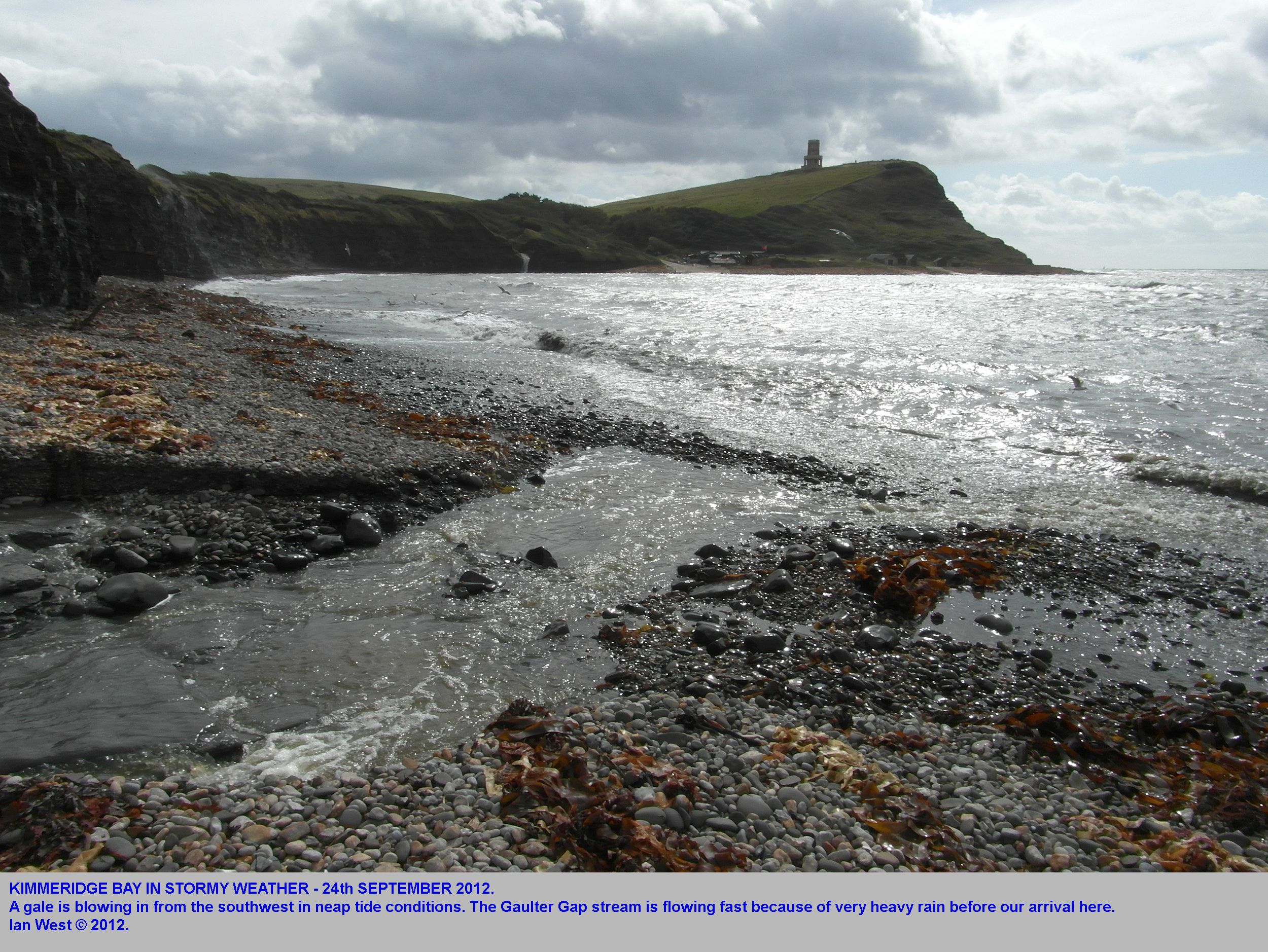 Geology Of The Wessex Coast Southern England By Ian West