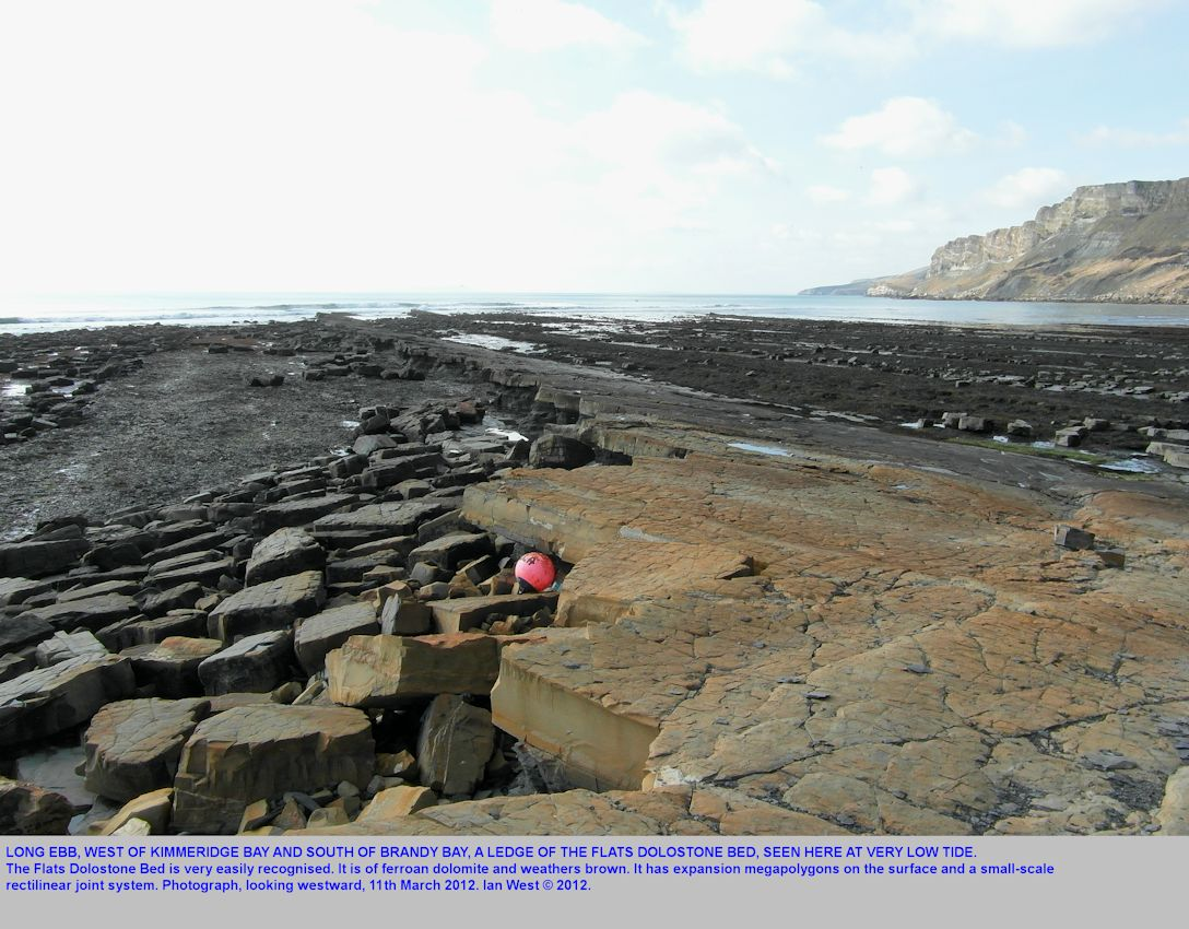 Long Ebb, a ledge seen at low spring tide, south of Brandy Bay, Kimmeridge, Dorset, March 2012