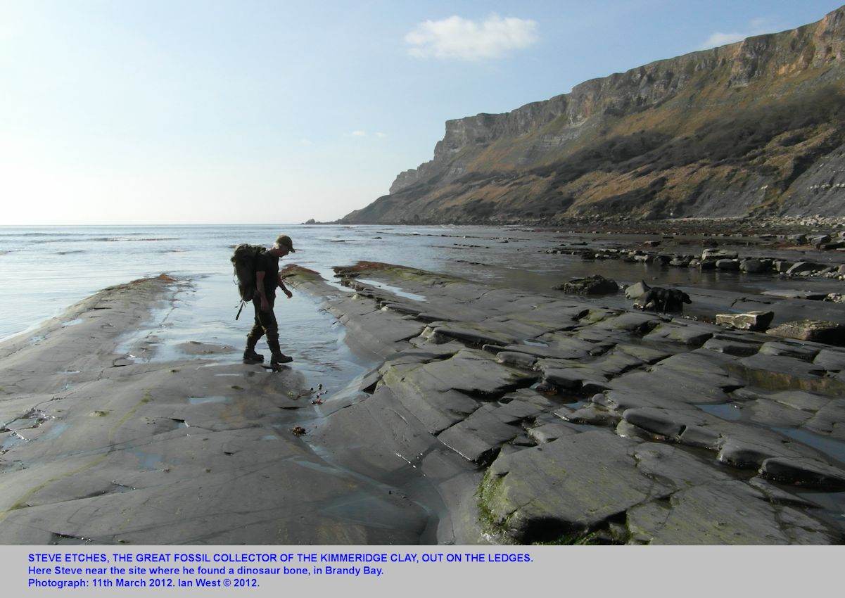 Steve Etches, the famous fossil collector, out on the ledges at Brandy Bay, Kimmeridge, Dorset, 2012