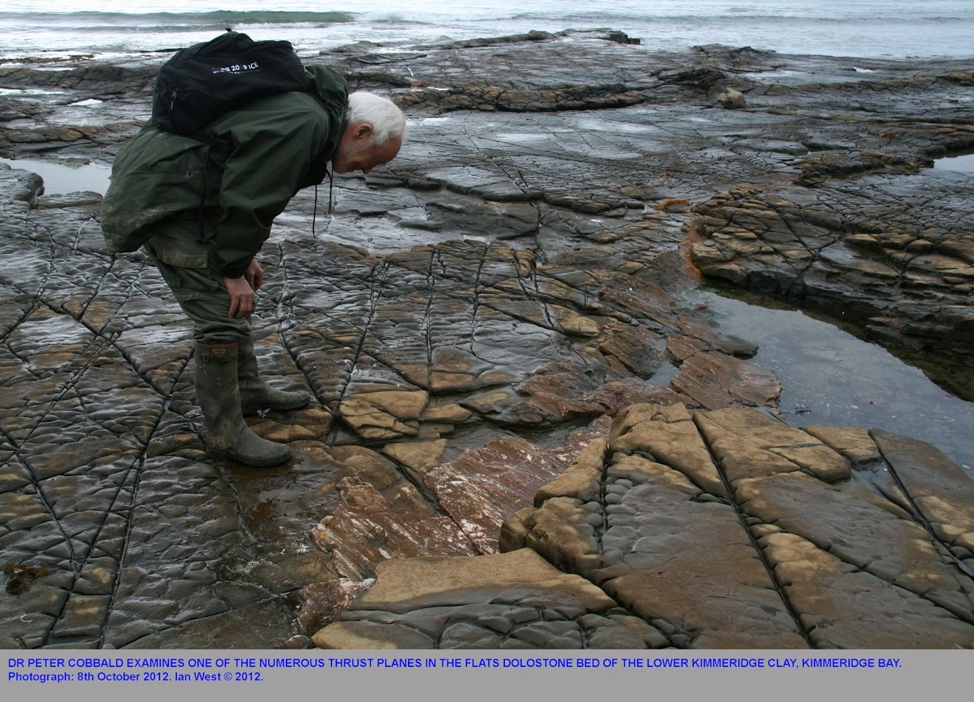 Dr Peter Cobbald examines a thrust plane in the Flats Dolostone Bed, Kimmeridge Bay, Dorset, 8th October 2012