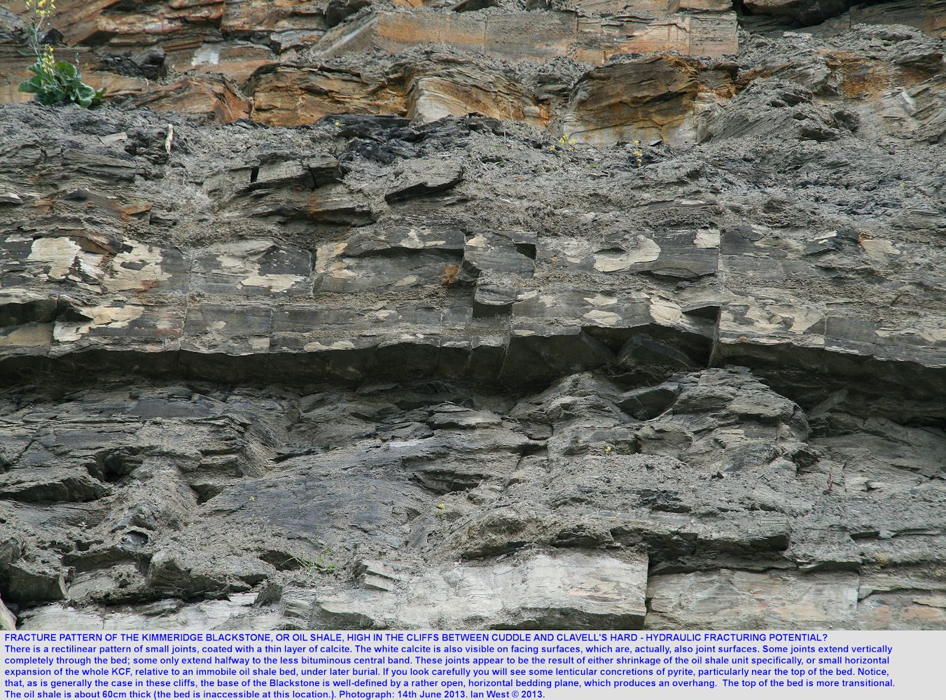 A rectilinear fracture pattern, possibly useful for hydraulic fracturing, seen in the Kimmeridge Blackstone or oil shale in the cliffs between Cuddle and Clavell's Hard, east of  Kimmeridge Bay, Dorset