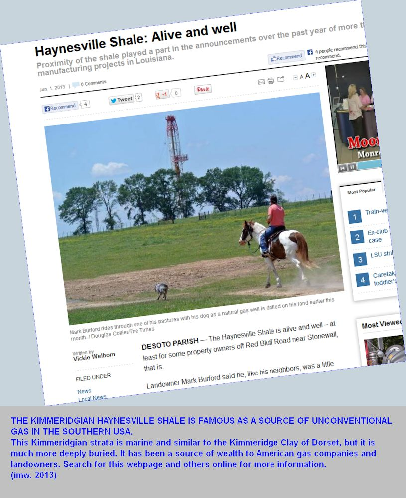 The Kimmeridgian Haynesville Shale of the southern USA, with unconventional gas resources, search for this webpage