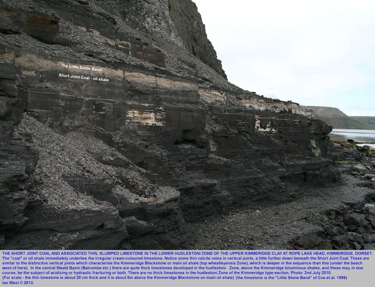 The Little Stone Band and the Short Joint Coal at Rope Lake Head, Kimmeridge, Dorset