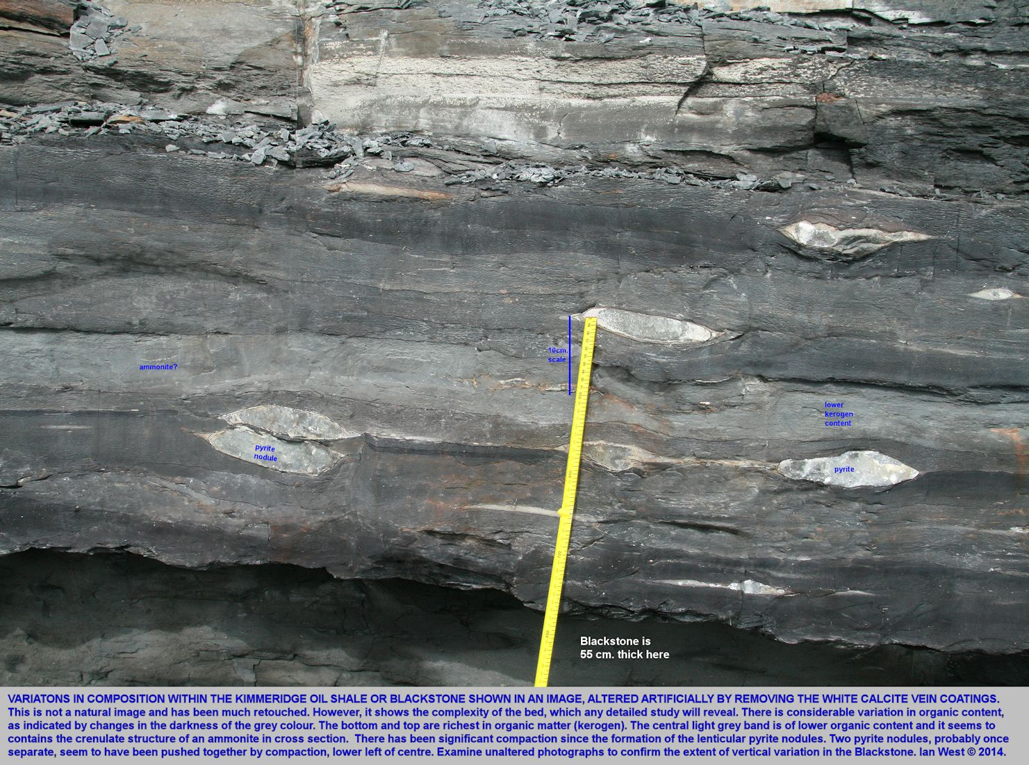 The Kimmeridge Blackstone or Kimmeridge Oil Shale, shown with colour variations emphasised and surface calcite artificially removed from the photograph, 2014; compare with unaltered images