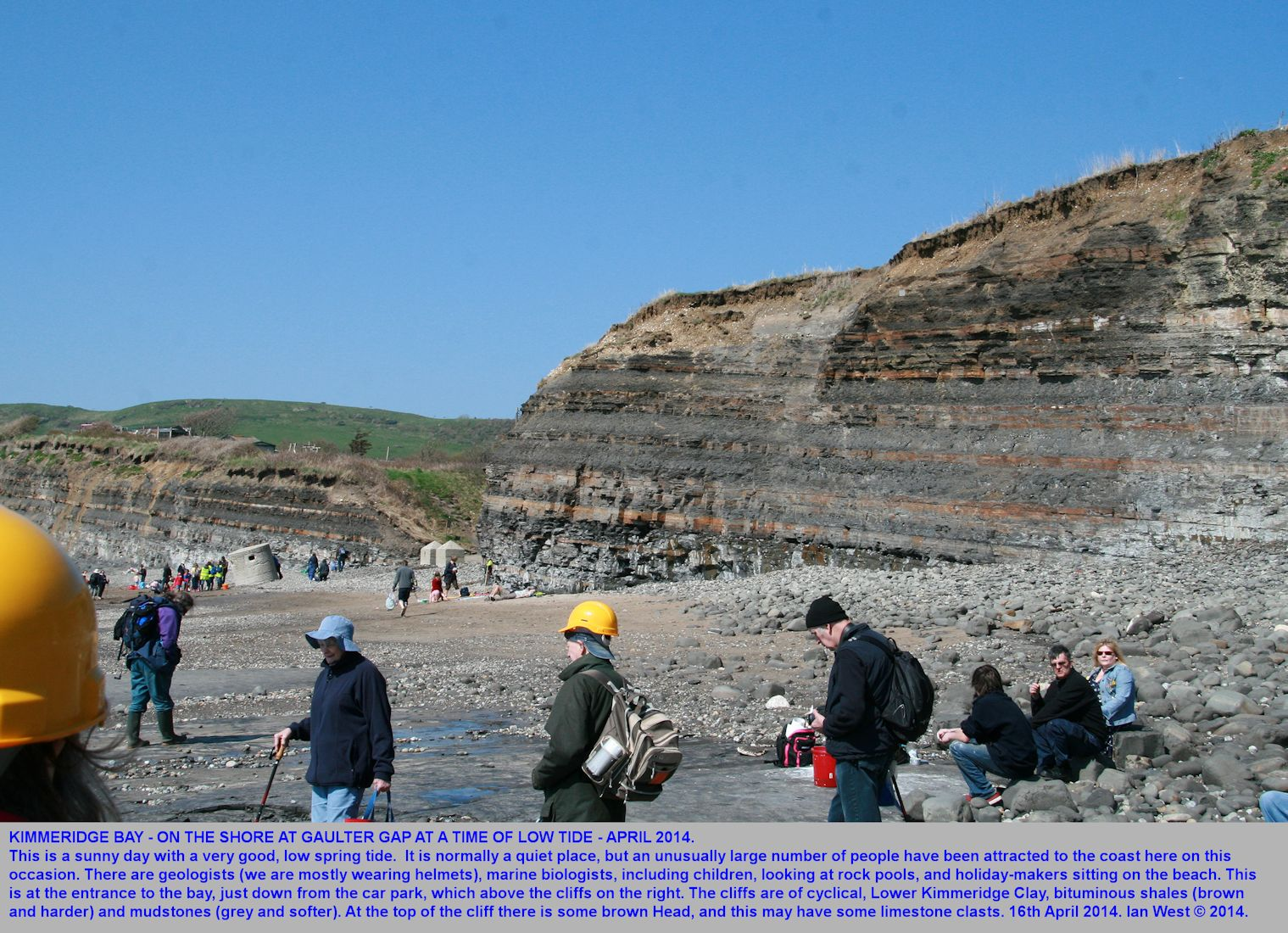 Geologists on the beach at Gaulter Gap, Kimmeridge Bay and in front of cyclical bituminous shale cliffs, 16th April 2014