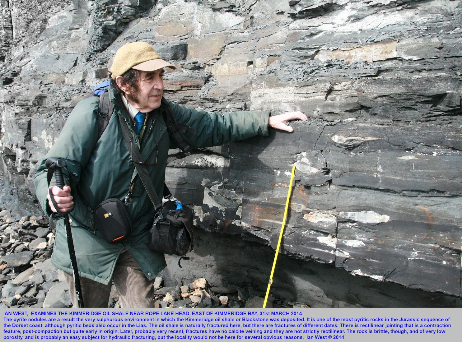 Ian West examines the Kimmeridge Oil Shale or Blackstone, near Rope Lake Head, east of Kimmeridge Bay, Dorset, 31st March 2014