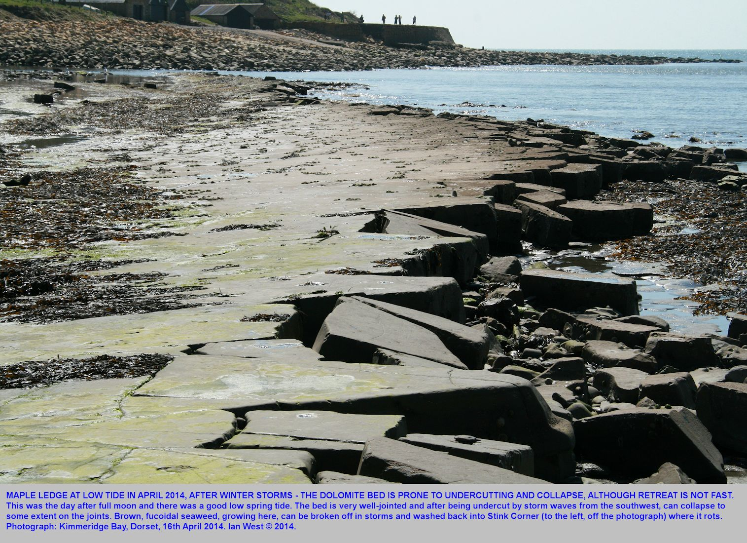 Maple Ledge, with some fracture and fall of blocks after winter storms, Kimmeridge Bay, Dorset, 16th April 2014