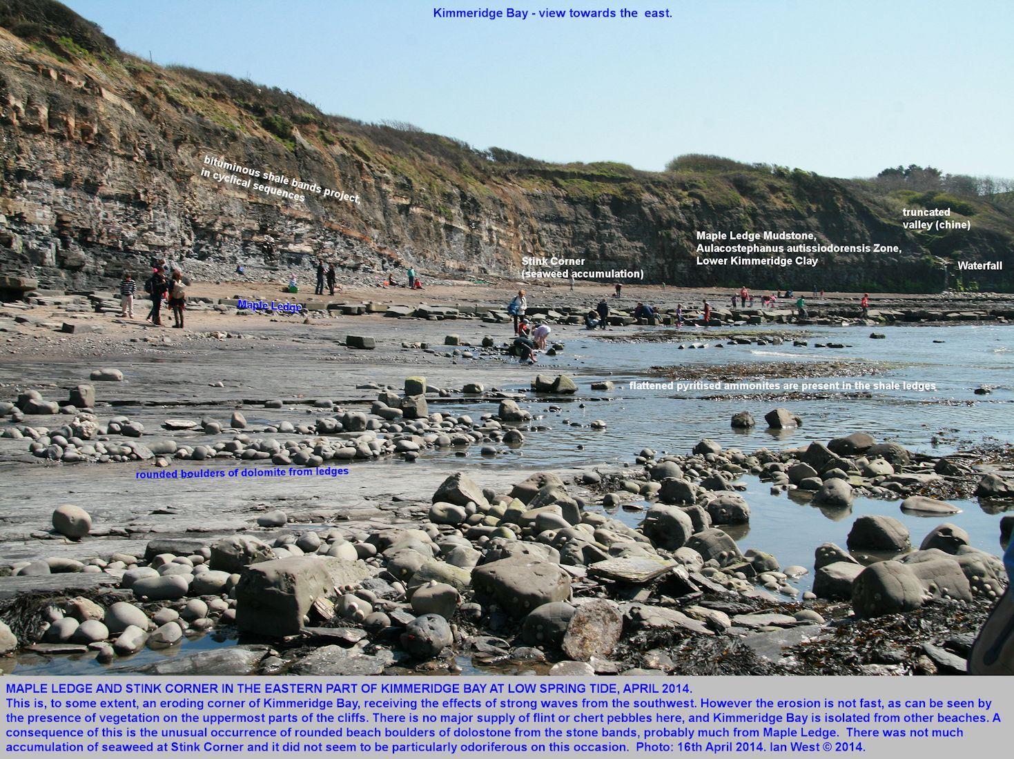 The eastern corner of Kimmeridge Bay, Dorset, with Maple Ledge and Corner, at low spring tide, 16th April 2014