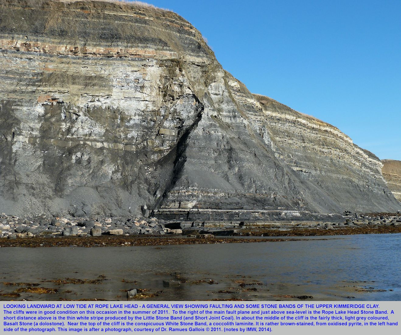 A general view of the Upper Kimmeridge Clay of Rope Lake Head cliff, seen from a seaward ledge, and photographed by Dr. Ramues Gallois, 2011, East of Kimmeridge Bay, Dorset