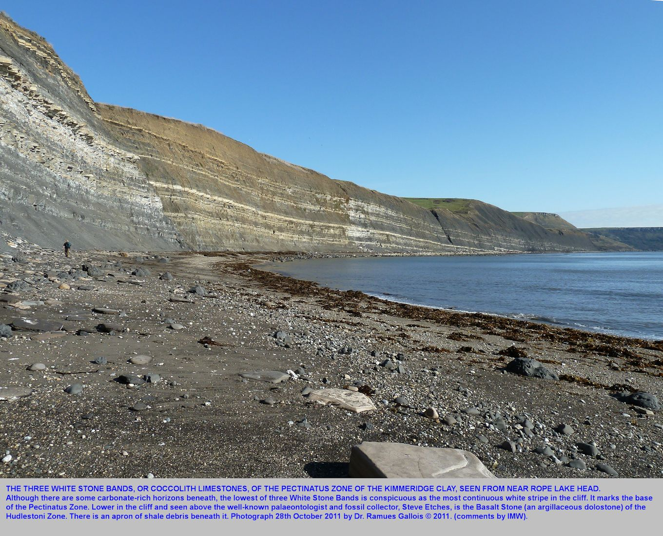 A broad view in good weather of the Three White Stone Bands, Pectinatus Zone, Upper Kimmeridge Clay, Kimmeridge Bay, Dorset, photograph by Ramues Gallois, 28th October 2011