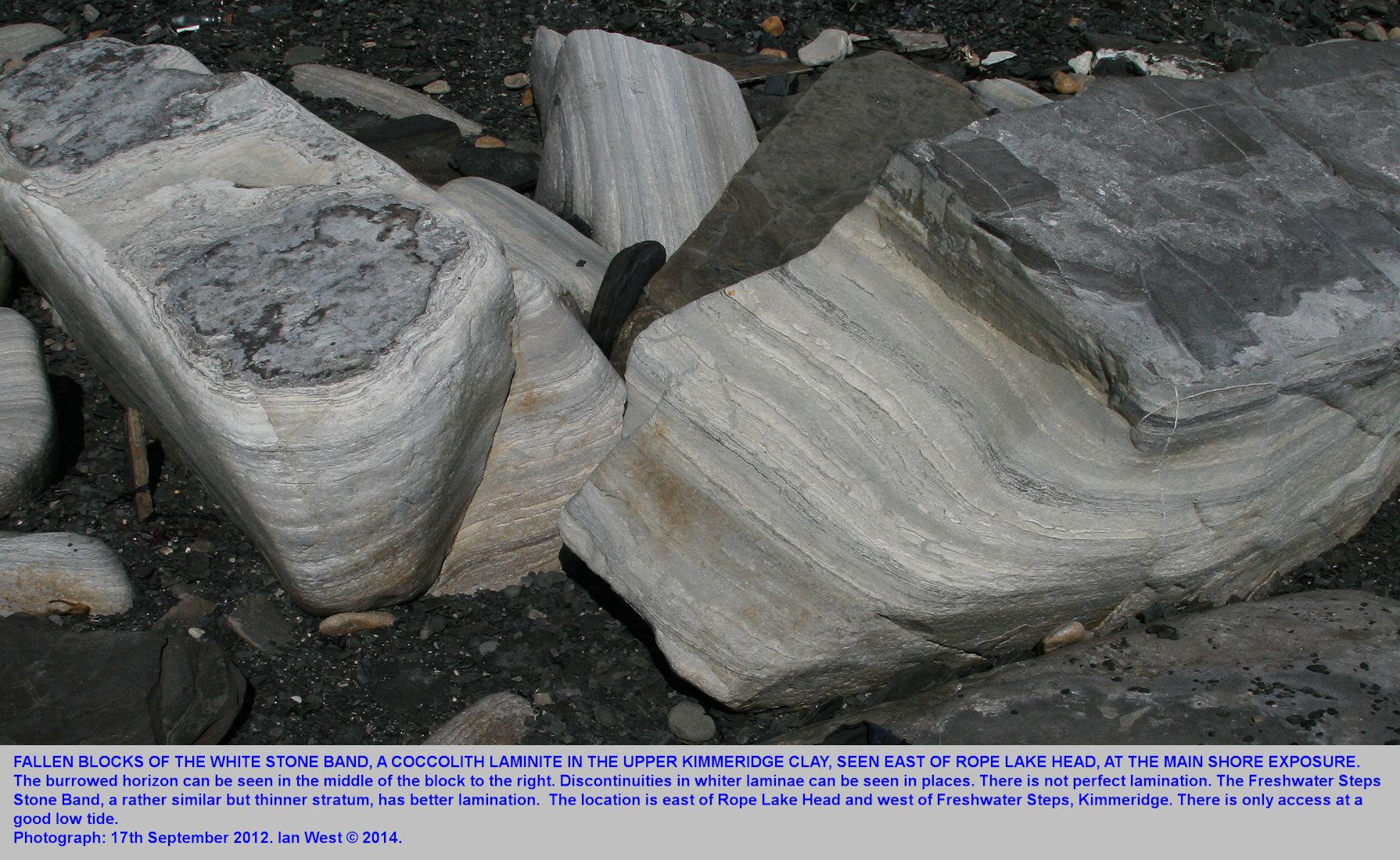 Fallen blocks of the White Stone Band, seen on the shore east of Rope Lake Head, and near the White Stone Band ledge at sea level, Kimmeridge, Dorset